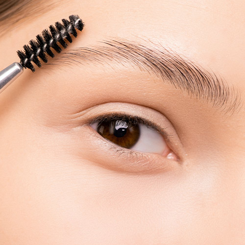 Brow Care & Make Up